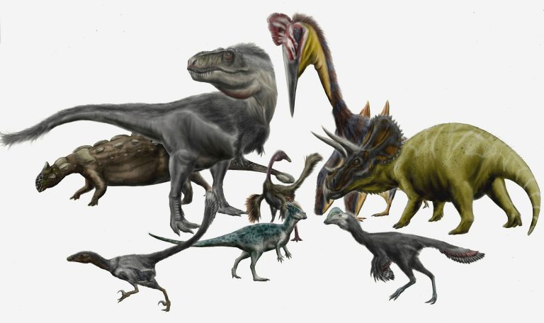 Hell Creek dinosaurs and pterosaurs by durbed on Deviantart. Various dinosaurs and pterosaurs from the Hell Creek Formation. From back to front: Ankylosaurus, Tyrannosaurus, Quetzalcoatlus, Triceratops, Struthiomimus, Pachycephalosaurus, and the unnamed dromaeosaurid and caenagnathid now named Acheroraptor and Anzu respectively. Author: Durbed