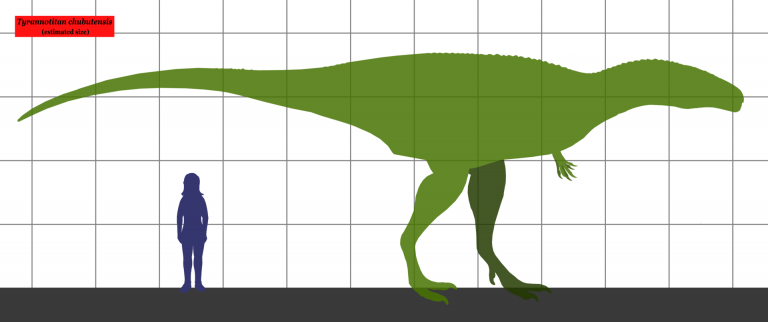 Estimated size of Tyranotitan, compared to a human. Author: Conty