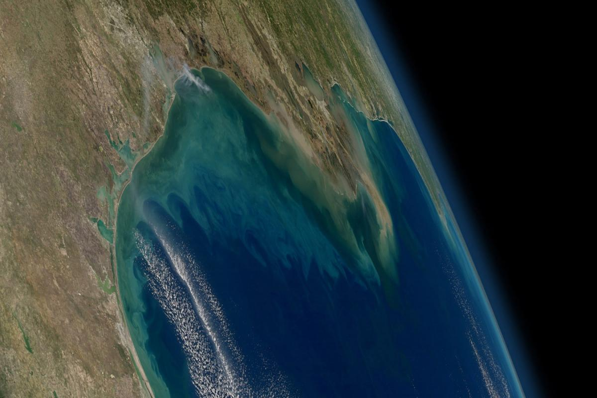 "Oxygen-depleted ""dead zones"" often form in the northern Gulf of Mexico due to nutrient-rich runoff from the Mississippi and Atchafalaya rivers, which are seen here as tan and greenish-brown plumes visible from the International Space Station in 2012. Nutrient-rich volcanic ash may have fed similar dead zones that produced shale oil and gas fields from Texas to Montana. Credit: NASA/GSFC/Aqua MODIS"