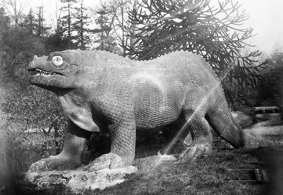 "Original caption, March 17, 1922: ""The Iguanadons which lived during the Wealden formation would, if living today, soon be extinct, for despite its dynamic size it could not hold its own against modern firearms. However its enormous size and strength would furnish ample sport for the modern huntsman."" #  Bettmann / Getty"
