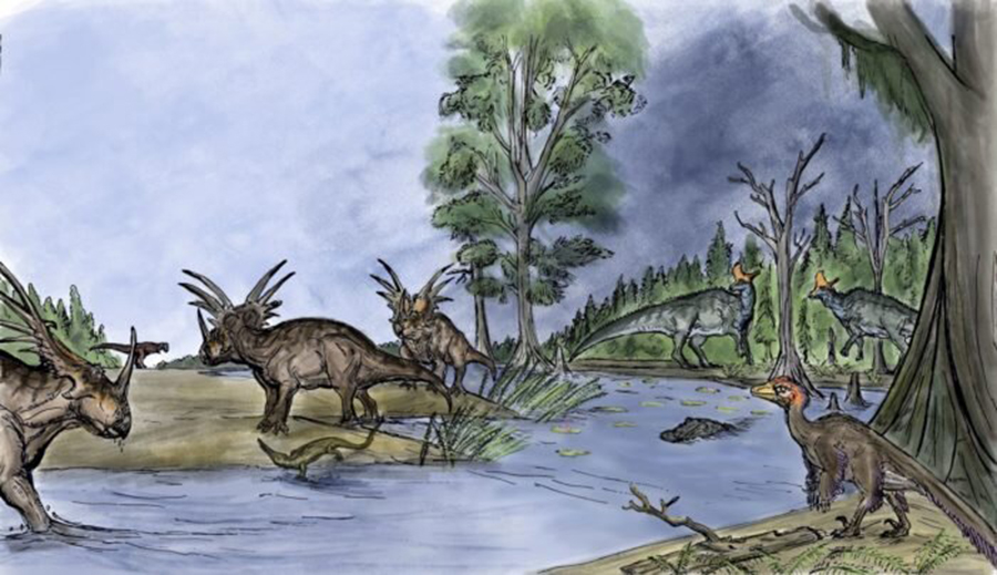 About 75 million years ago, southern Alberta was a lush and warm coastal floodplain rich in plant and animal life, similar to Louisiana's environment today. Credit: Luke Dickey // Special to Western News