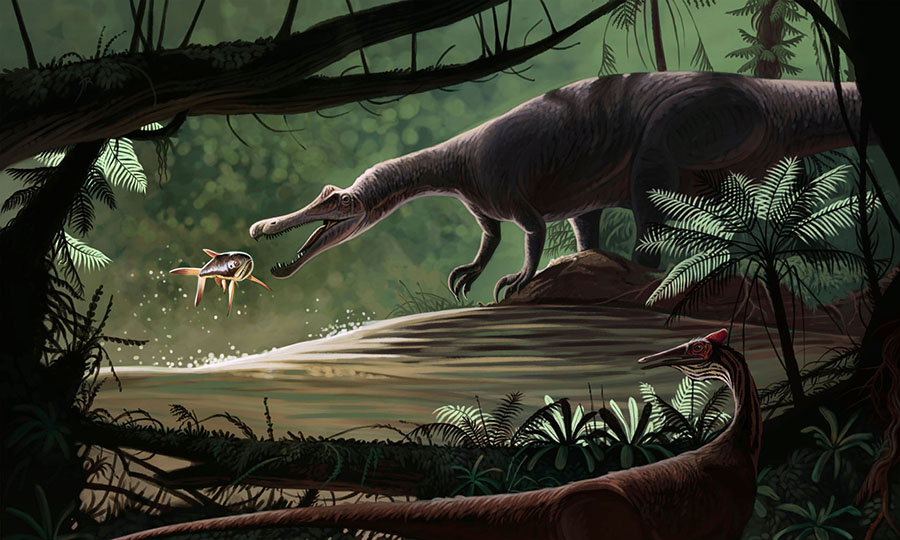 A Baryonyx fishing while a Pelecanimimus observes. Photograph: Stocktrek Images/Alamy