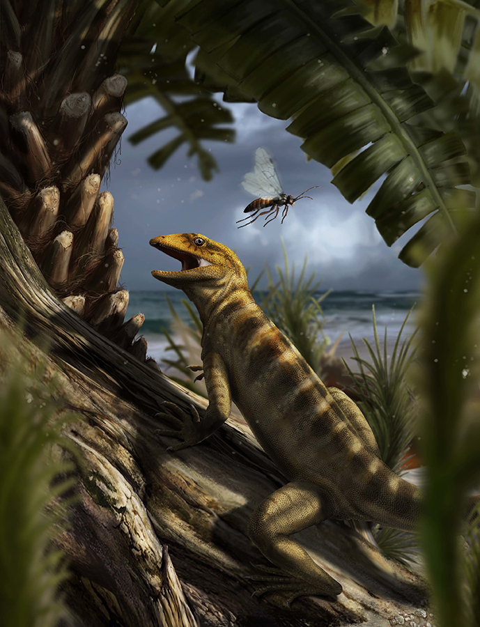 A life scene in the Dolomites region, Northern Italy, about 240 million years ago, with Megachirella wachtleri walking through the vegetation. Davide Bonadonna