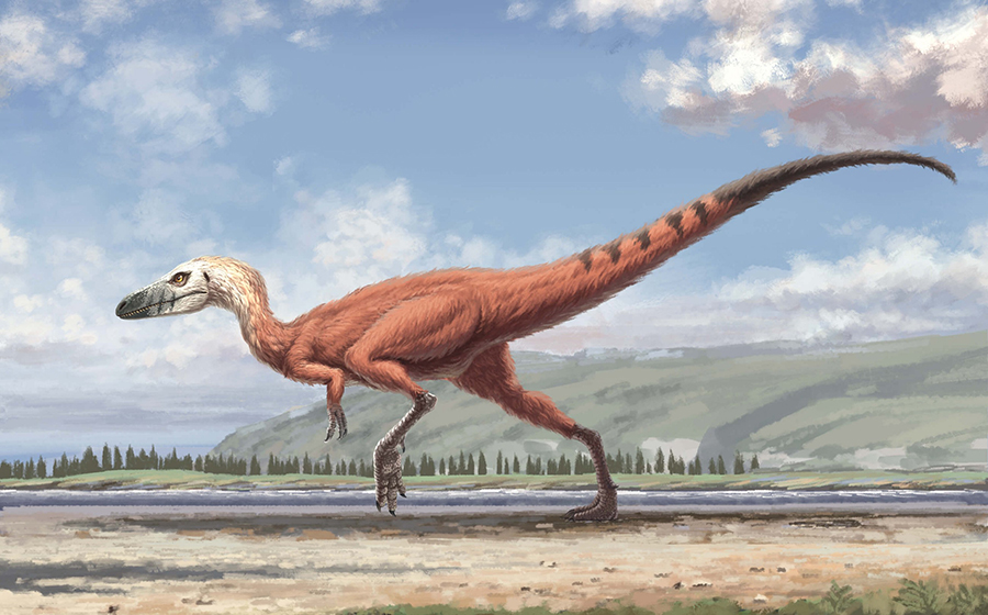 A small dinosaur—probably about the size of a blackbird—stalks a lakeshore. That animal left footprints in the mud that hardened and lasted for over 110 million years, until a team of scientists uncovered them in South Korea. (Artist's interpretation by Zifeng Wang.)