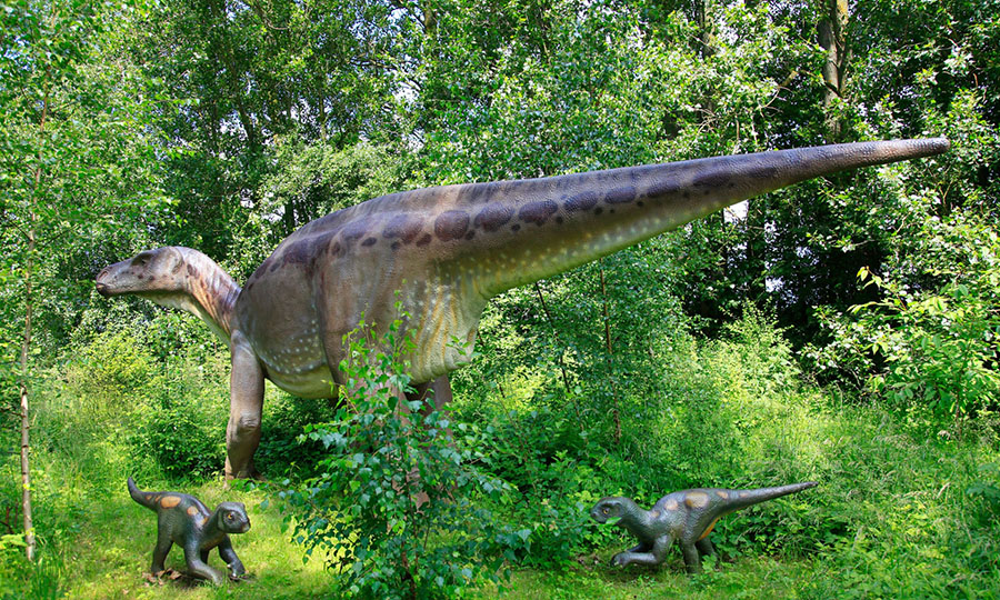 An Iguanodon with babies. Photograph: blickwinkel/Alamy