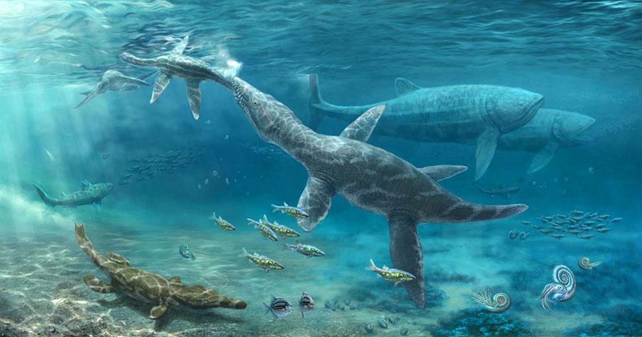 An artist's impression of Jurassic marine reptiles. Image credit: Nikolay Zverkov.