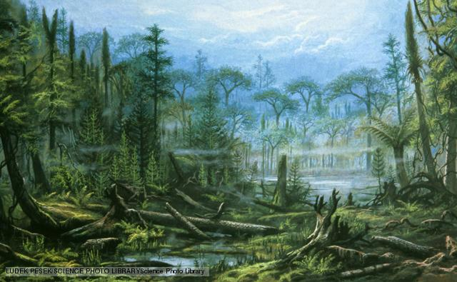 An artist's impression of a Carboniferous forest