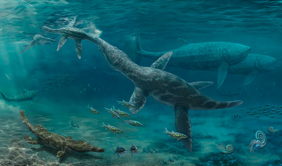 An artistic reconstruction of the Oxford Clay Formation, depicting a Middle Jurassic ecosystem with a plesiosaur (upper left), a large predatory pliosaurid (center), a metriorhynchid crocodyliform (bottom left) and the giant fish Leedsichthys (upper right). Image credits: Nikolay Zverkov