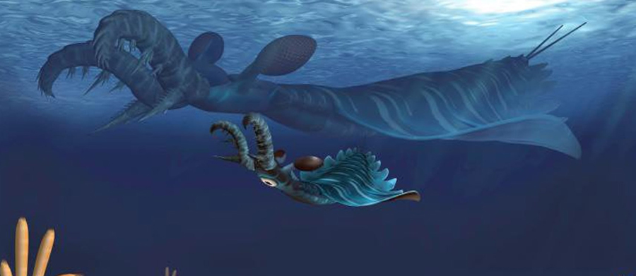 Artist's impression of juvenile (foreground) and adult (background) Lyrarapax unguispinus hunting in the water. Credit: Science China Press