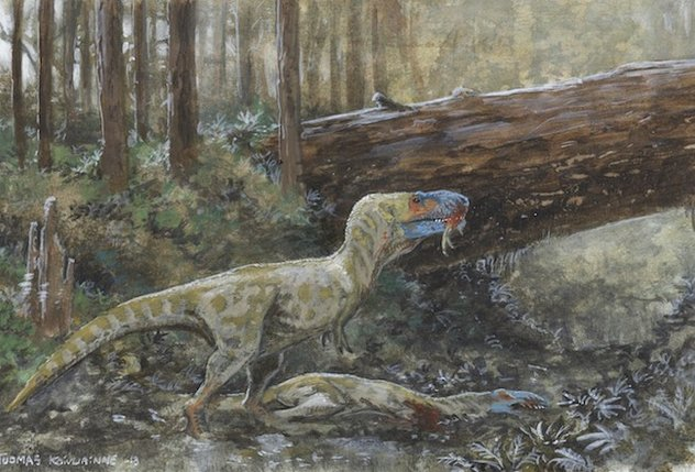 Artists reconstruction of one Daspletosaurus feeding on another. (Tuomas Koivurinne )