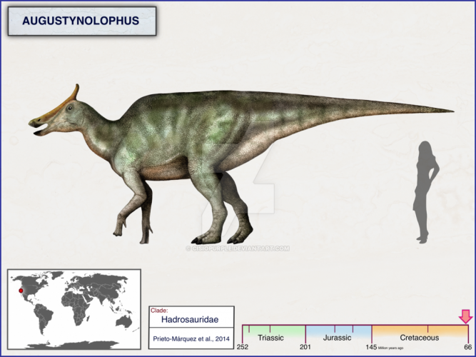 Augustynolophus by cisiopurple on DeviantArt
