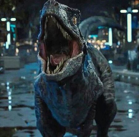 Blue – The Raptor – Jurassic World.