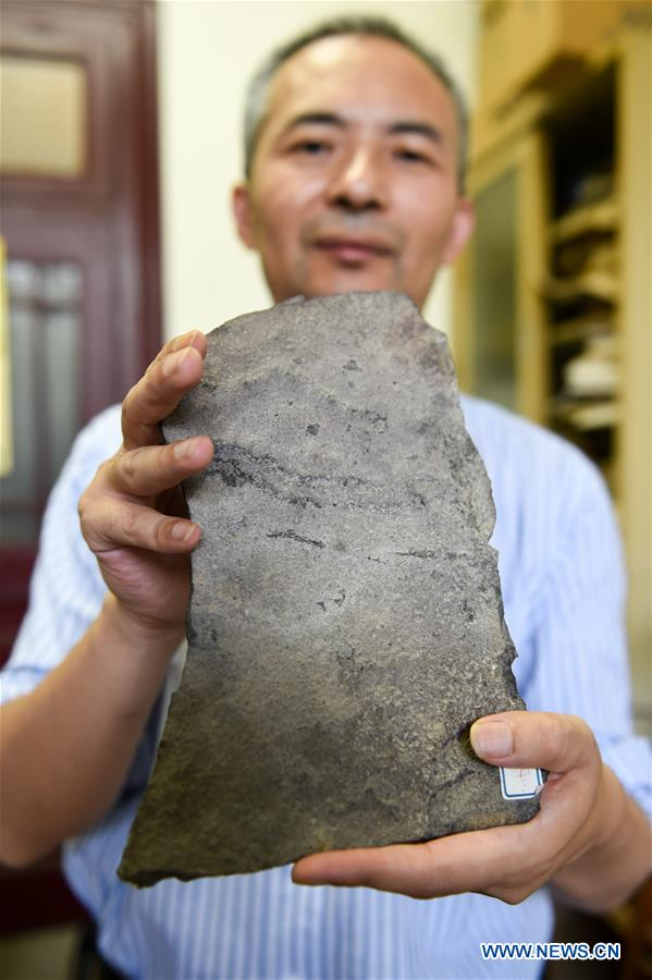 A staff member of the Nanjing Institute of Geology and Palaeontology under the Chinese Academy of Sciences displays the animal fossil footprints, which were made in the Ediacaran Period, June 6, 2018. Chinese and American paleontologists reported in the journal Science Advances the discovery of earliest animal fossil footprint ever found. (Xinhua/Li Bo)