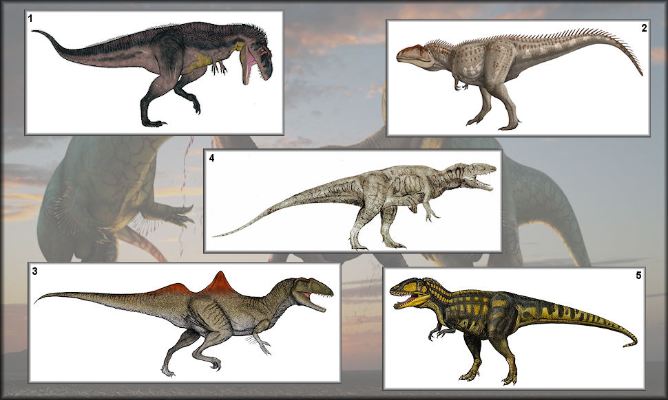 Some of the most known Carcharodontosaurids