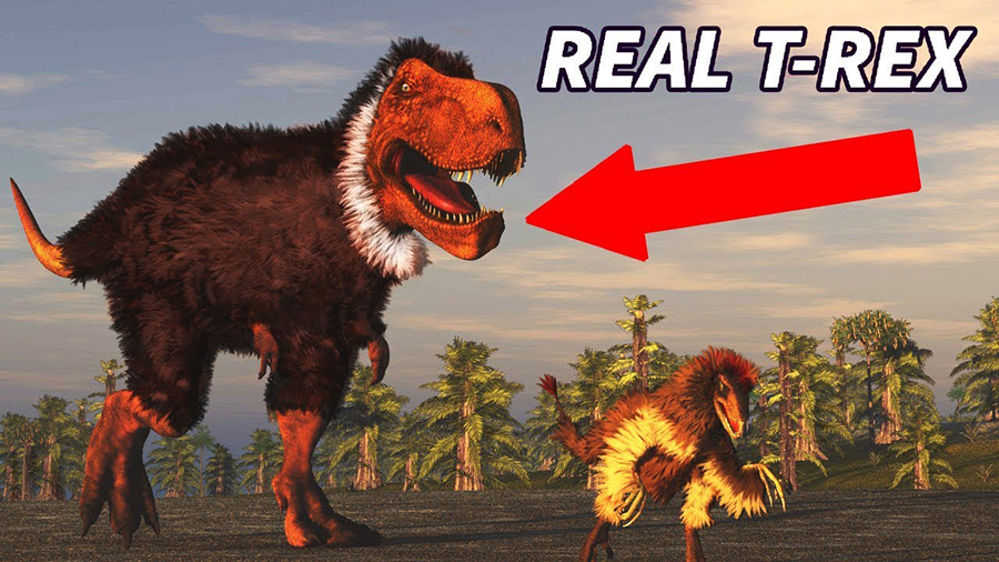 Check out these myths about dinosaurs you probably still believe!