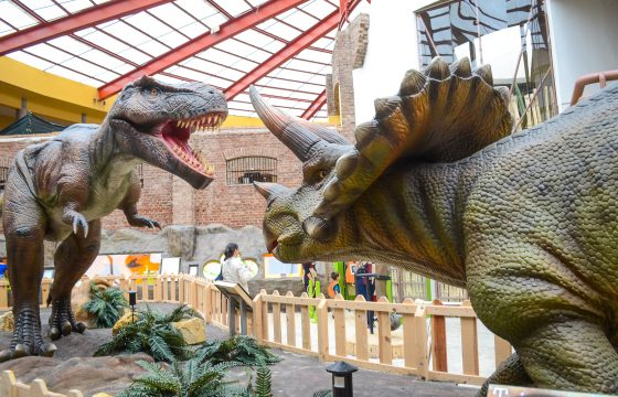 Tyrannosaurus Rex and Triceratops. Alberto Font/The Tico Times