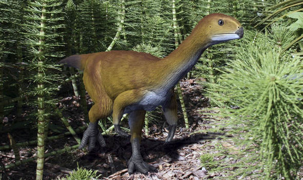 Chilesaurus: The 'Missing Link' Between Plant and Meat Eaters?
