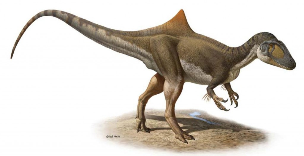 Concavenator restoration by Raul Martin