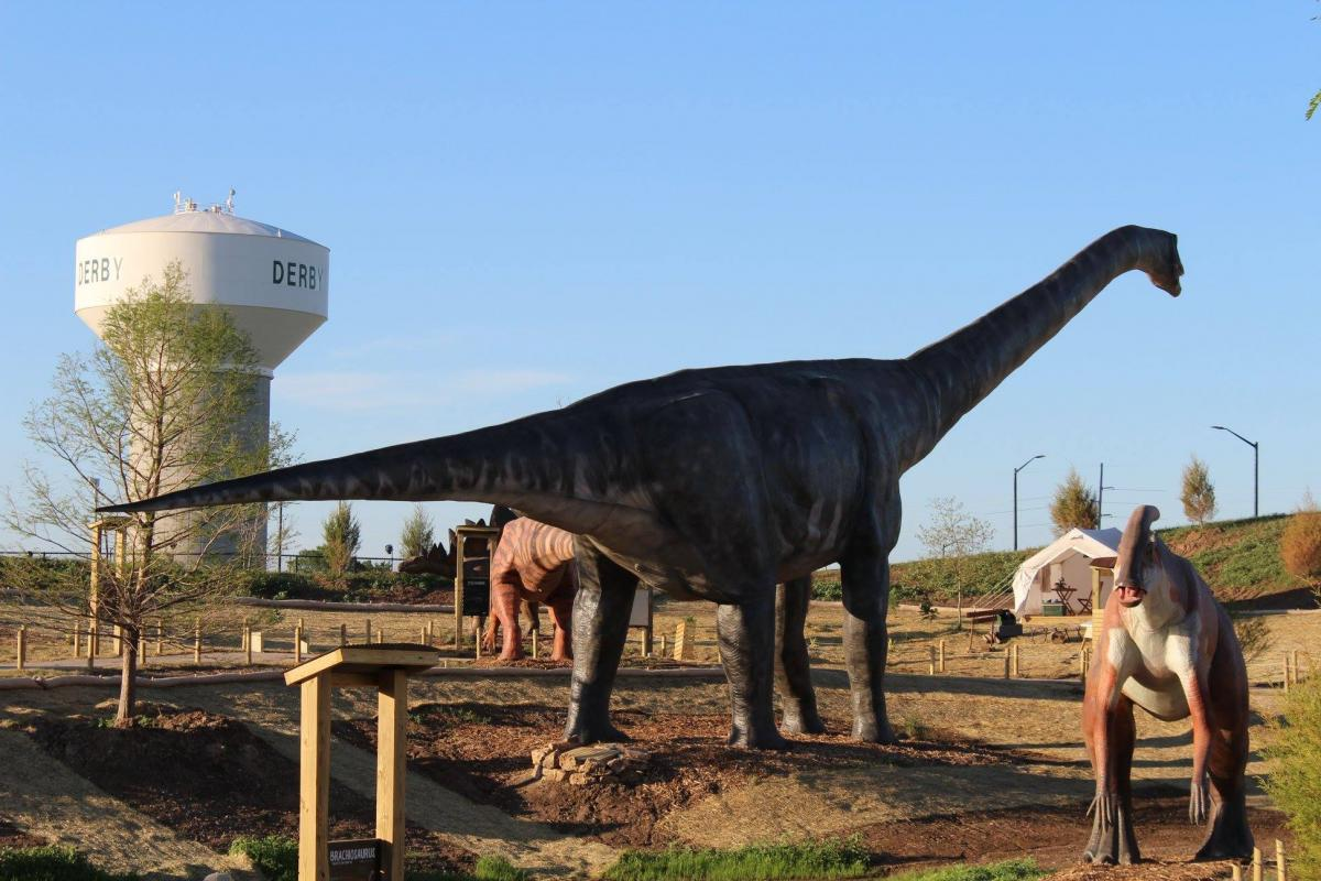 Copyright: Field Station: Dinosaurs (Derby, KS)