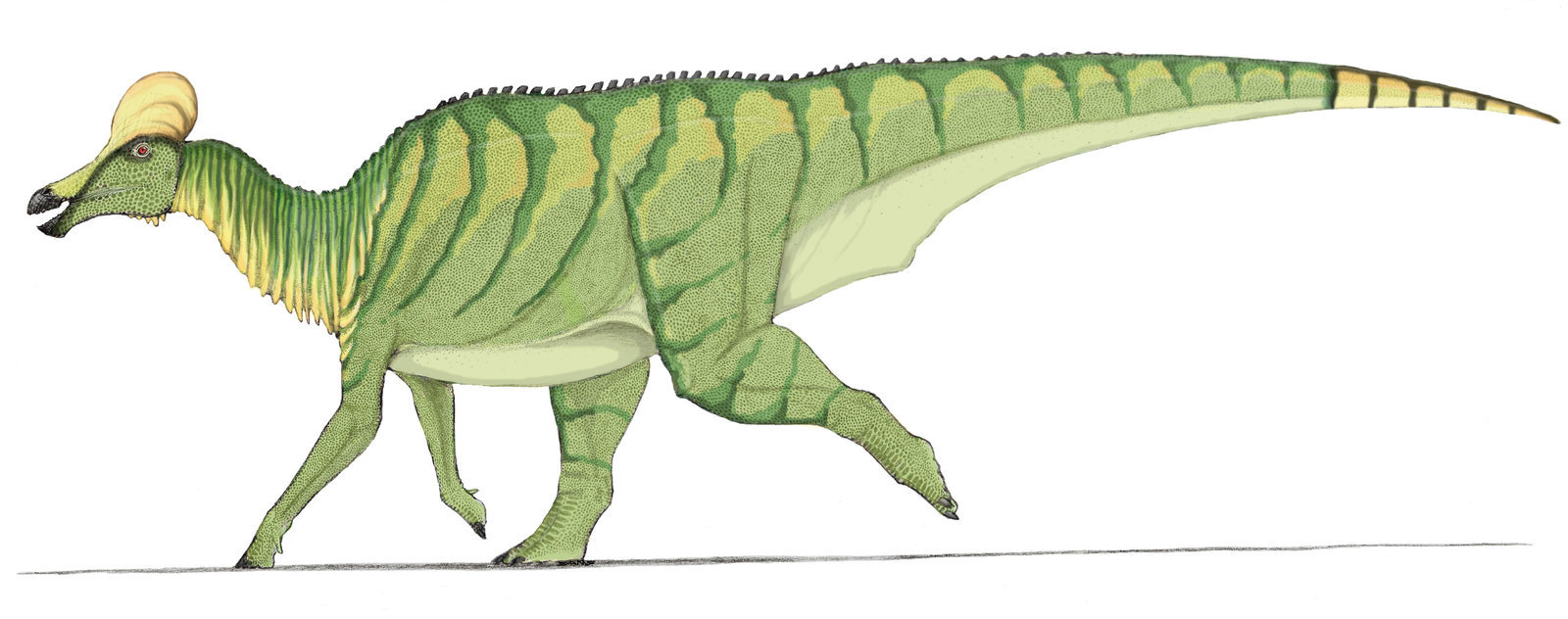 Corythosaurus in color by Ahrkeath on DeviantArt