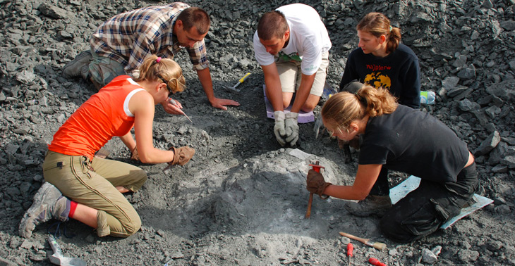 DIG IT Field researchers excavated the skeleton of the new species in Silesia, Poland.  TOMASZ SULEJ