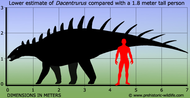 Dacentrurus by Prehistoric Wildlife