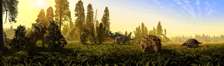 Depiction of dietary niche partitioning among megaherbivorous dinosaurs from the DPF (MAZ-2).  Left to right: Chasmosaurus belli, Lambeosaurus lambei, Styracosaurus albertensis, Euoplocephalus tutus, Prosaurolophus maximus, Panoplosaurus mirus. A herd of S. albertensis looms in the background. Image courtesy of J.T. Csotonyi.