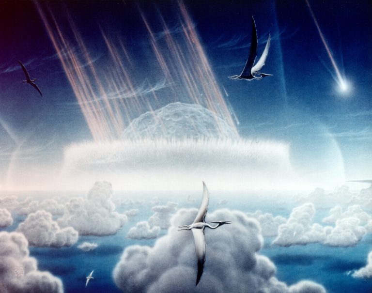Dino-Killing Chicxulub Asteroid Inhibited Photosynthesis, Cooled Earth for Up To Four Years