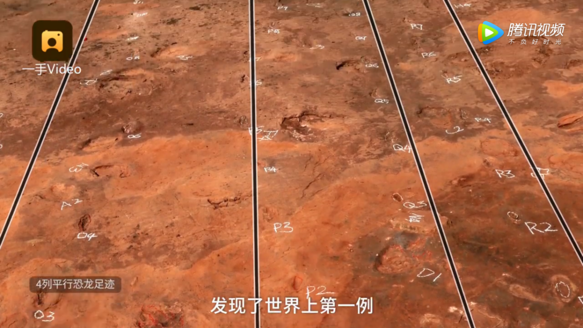 Four paralleled footprint trackways of dromaeosaurid found on the site suggest the dinosaurs travelled together. Screenshot/v.qq.com