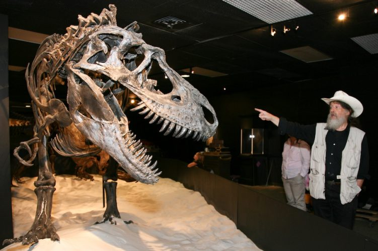 Dr. Bob Bakker of the Houston Museum of Natural Science (HMNS) with Gorgosaurus.