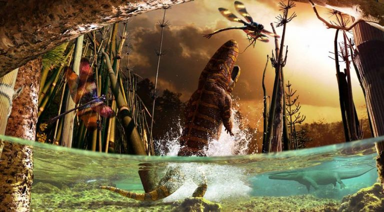 EARLY PERMIAN LANDSCAPE A glimpse at several creatures from the paleozoic era.