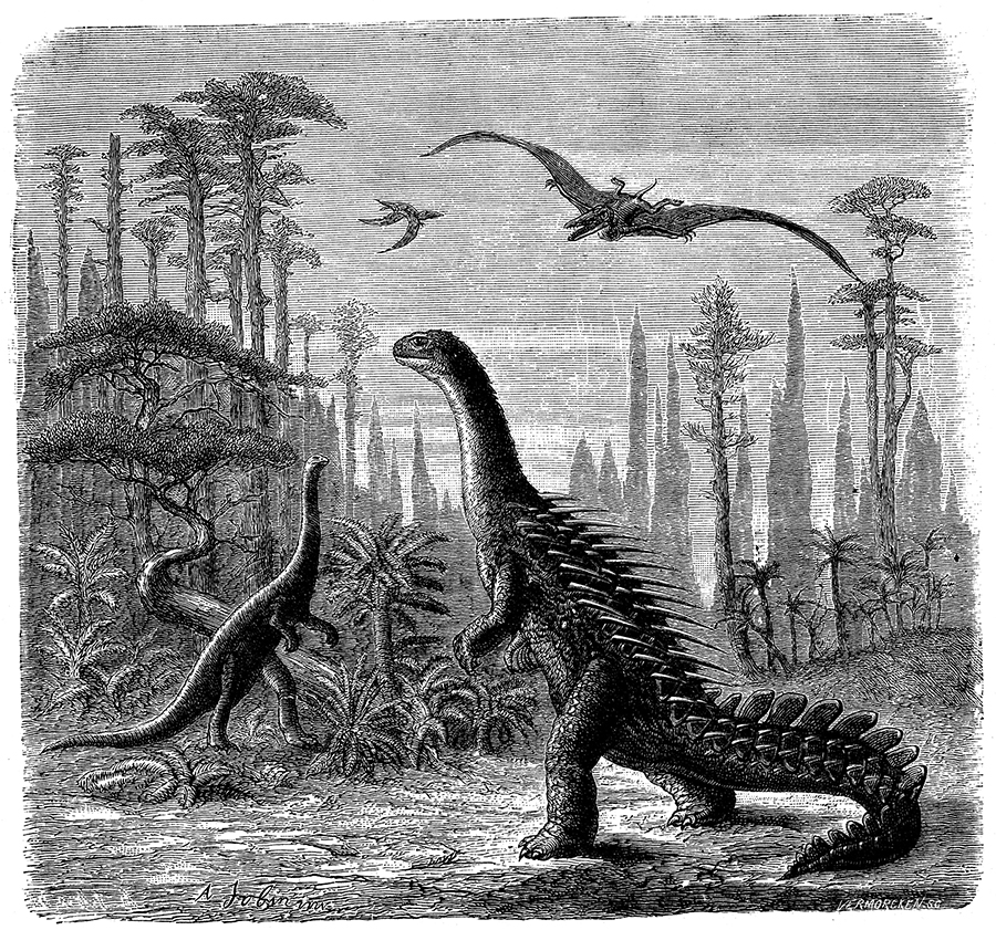 Ideal Jurassic landscape in America, 1884. From fossil evidence, Othniel Marsh imagined a scene during the late Jurassic epoch 163 to 161 million years ago, with Stegosaurus, Compsognathus (left) and Pterodactyls inhabiting it. From Scientific American. (New York, 29 November 1884). (Photo by Oxford Science Archive/Print Collector/Getty Images)