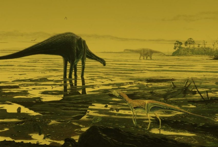 Giant dinosaurs called sauropods once roamed Scotland's coast, newly found footprints reveal.  ILLUSTRATION BY JON HOAD
