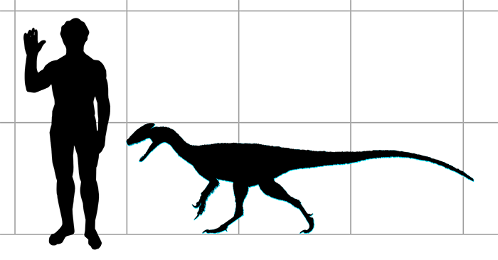 Guanlong compared to a human in size