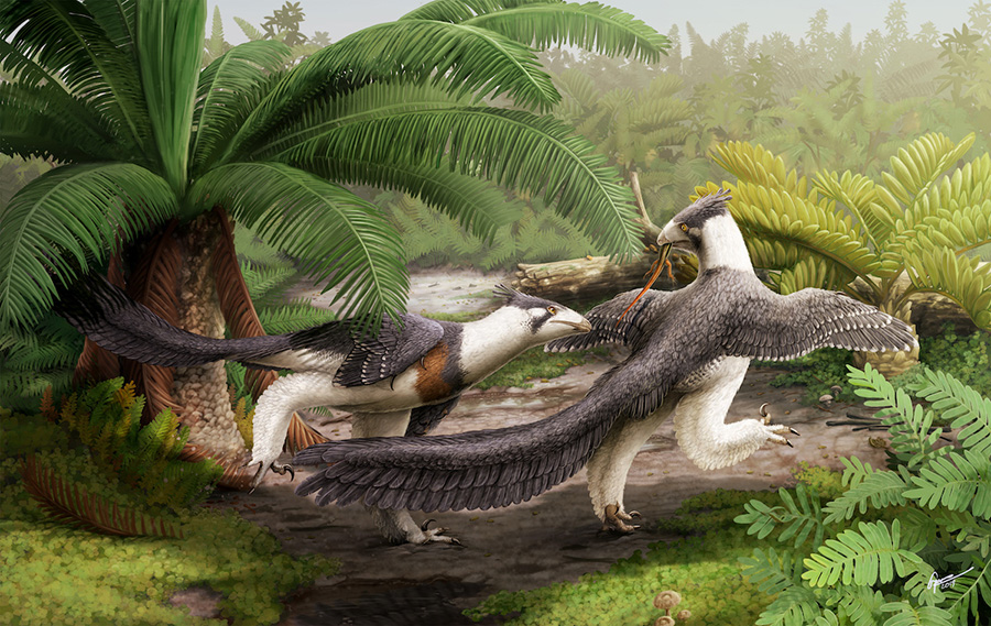 An artistic rendering of what Lori, scientifically known as Hesperornithoides miessleri, may have looked like when she was alive roughly 150 million years ago. IMAGE BY GABRIEL UGUETO