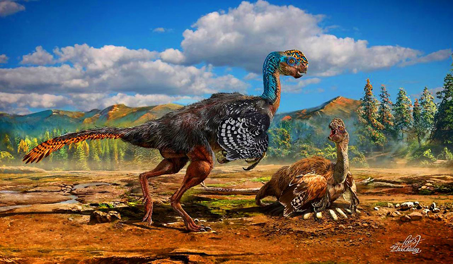 The colors found in modern birds' eggs did not evolve independently, as previously thought, but evolved instead from dinosaurs. This is an artist's impression of the oviraptorid dinosaur Huanansaurus ganzhouensis. Image credit: Chuang Zhao.
