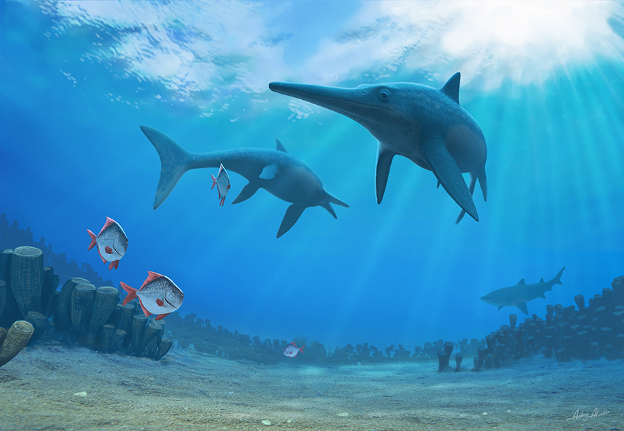 Artist's impression of ichthyosaurs. (Image: Andrey Atuchin)