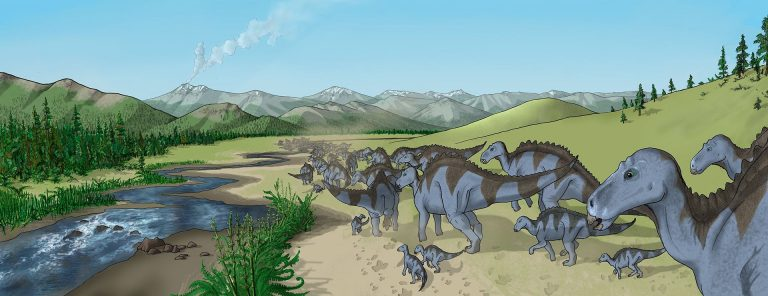 Illustration of a herd of Maiasaura walking along a creekbed, as found in the semi-arid Two Medicine Formation fossil bed. This region was characterized by volcanic ash layers and conifer, fern and horsetail vegetation. Author: Debivort