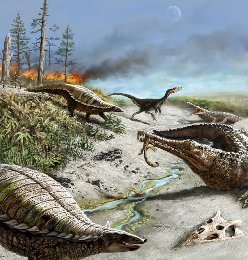 Image description: 212 million years ago in what is now northern New Mexico, the landscape was dry and hot with common wildfires. Illustration by Victor Leshyk.