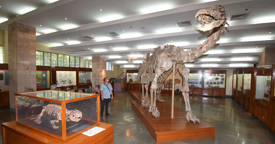 The Geological Study Unit museum in Kolkata. | Subrata Ganguly