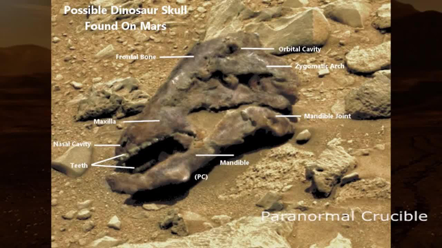 "The video maker has pointed out what he says are skull parts on the Martian ""rock"". NASA*PARANORMALCRUCIBLE*YouTube"