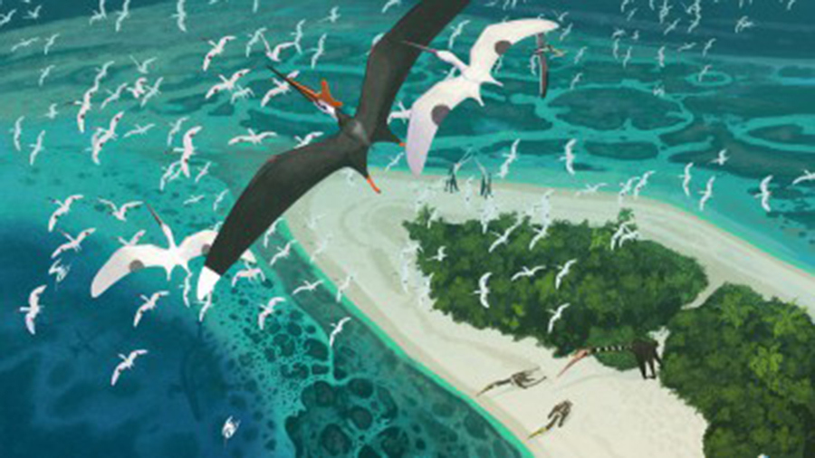 Artist's impression of how the pterosaurs may have looked Photo: University of Bath
