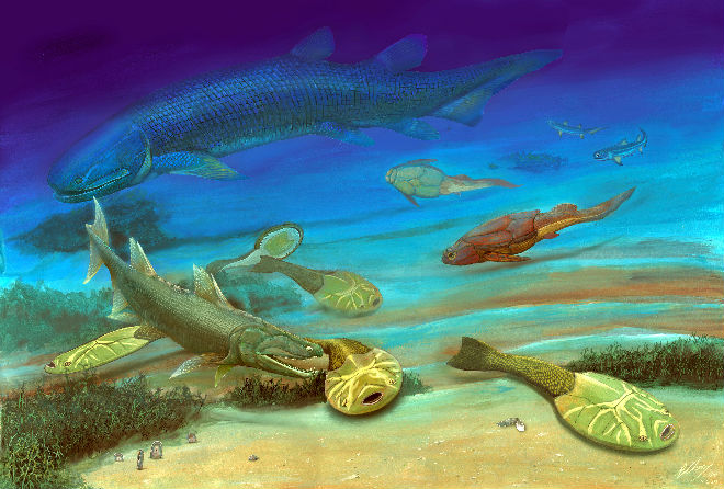 Life restoration shows Youngolepis (top) swimming in the sea in the Devonian Period. Drawing by courtesy of Brian Choo