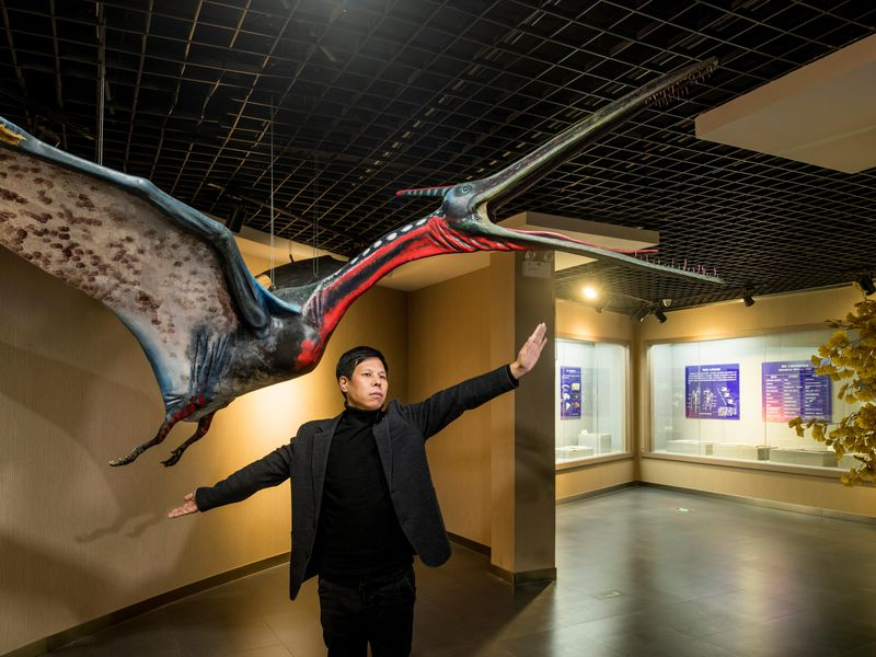 Liu Cun Yu, the director of the Beipiao Pterosaur Museum, poses in front of a full-scale model of a Moganopterus zhuiana, a species named after his wife. (Stefen Chow)