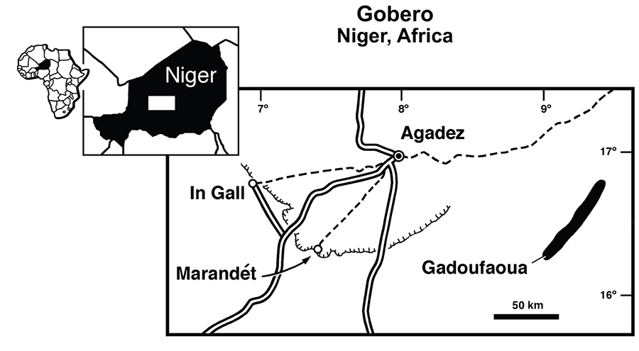 Location of outcrops of the Elrhaz Formation where fossils of Nigersaurus taqueti were found.