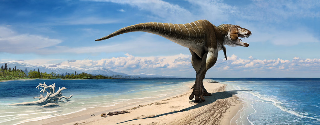 Lythronax on a sand spit near the east coast of Laramidia. By Olorotitan on DeviantArt