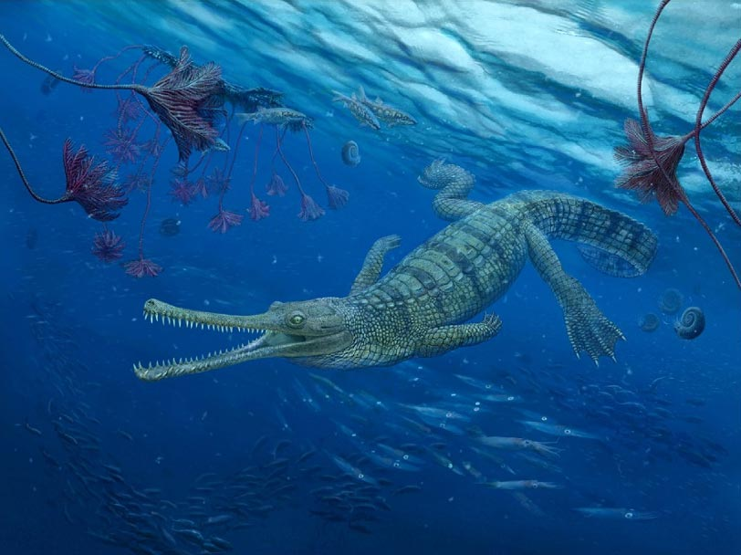 Artist's impression of Macrospondylus- an extinct fossil group of teleosauriods. Credit: Nikolay Zverkov