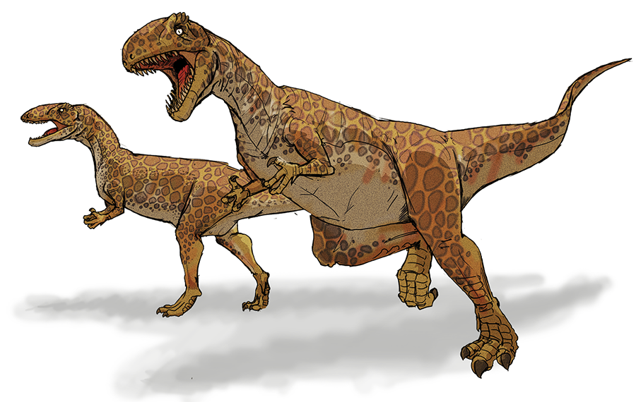 Modern restoration of Megalosaurus.