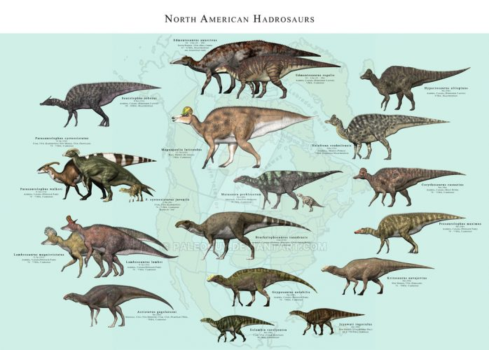 North American Hadrosaurs by PaleoGuy