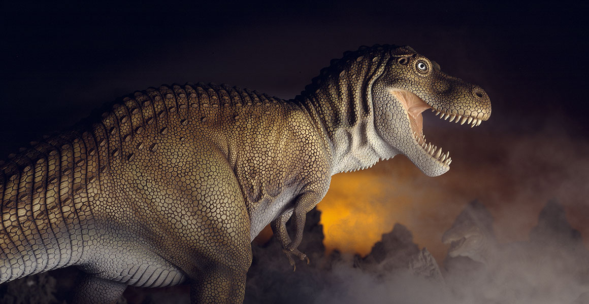 Numerous movie misconceptions have helped make these Tyrannosaurus famous.
